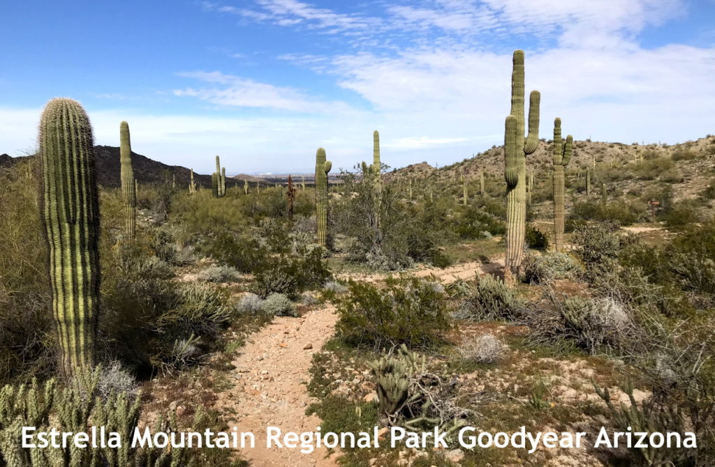 Goodyear Arizona Estrella Regional Park Hiking 1280 838